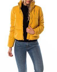 Erica Short Padded Jacket Golden Spice