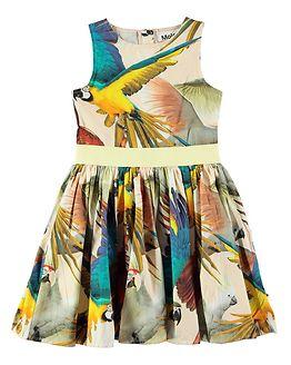 Carli Parrots