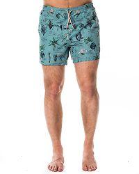 Tino Swimshorts Aquifer