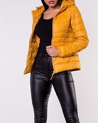 Tahoe Hood Jacket Golden Yellow