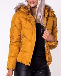 North Nylon Jacket Golden Yellow